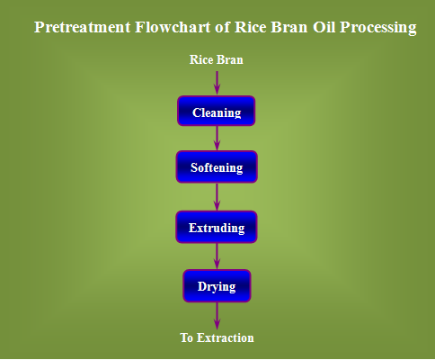 rice bran oil process